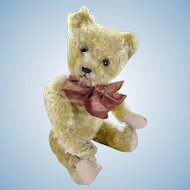 Basil English bear circa 1920