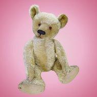 Sebastian 1920's Bing bear.