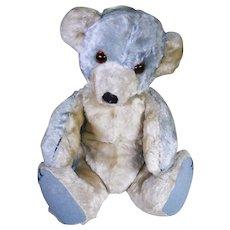 Blueboy Rare Blue Chad valley Cubby bear circa 1930's