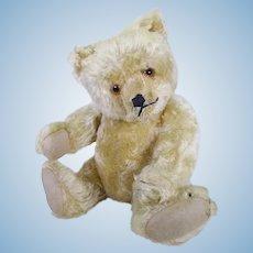 Cuddles German bear circa 1930's