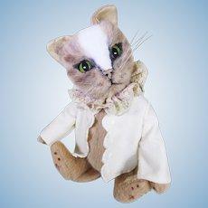 Burlington Beartie cat.