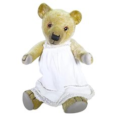 Miss Florrie English bear circa 1930's