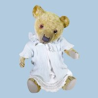 Miss Bluebell English bear circa 1920