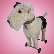 Steiff fox terrier on wheels.
