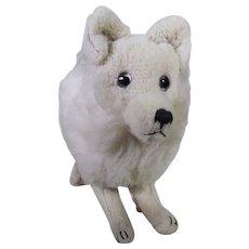 Rare French Fa.d.a.p Pomeranian circa 1920