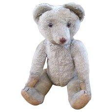 Very Rare Musical Cramer teddy bear