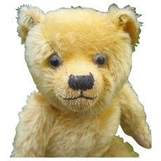 English Teddy Bear lovely condition 1930's