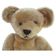 Large Ideal Antique Teddy Bear