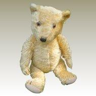 English Mohair Teddy Bear C.1930