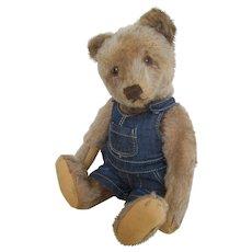 Steiff bear with button c.1950's