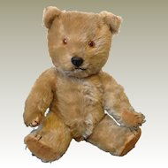1960's British Chiltern Hugmee bear