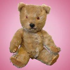 1960's British Chiltern Hugmee bear
