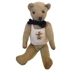 Adorable 1930s British Teddy  Bear