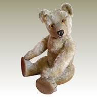Chad Valley Moon Eyed Bear c.1920's