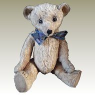 W J Terry Teddy Bear c.1915