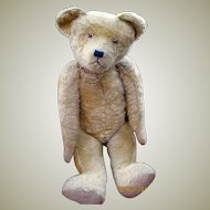 1920's English Teddy Bear 28 inches