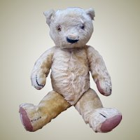 Chad Valley Magna Bear with label c.1930's
