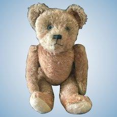 French made Teddy Bear by Fadap