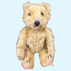 1930's German Jopi Teddy Bear