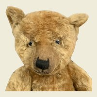 Large golden 1930's Chiltern bear 27 inches