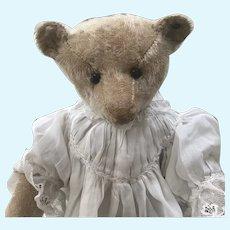 Pale blond 1908 Steiff bear wearing vintage dress