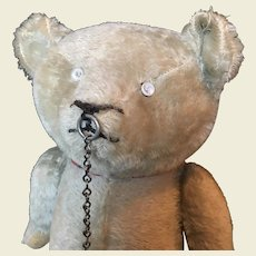 Rare American Electric Eye bear c.1920