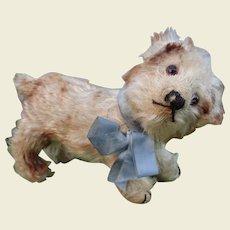 Rare Steiff Standing Molly Dog c.1920's