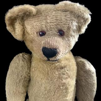 English bear c1920 very heavy 21 inches
