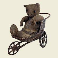 Early German bear in Wicker bath chair