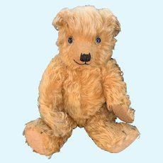Golden Chiltern bear dating to the 1930's 14 inches