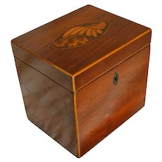 Single Tea Caddy