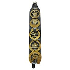 English Black Leather Horse Strap with 5 Horse Brasses