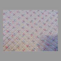 Wonderful Rare Nylon Organdy Fabric