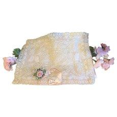 Fabulous Antique Silk Lingerie Case-Normandy Lace