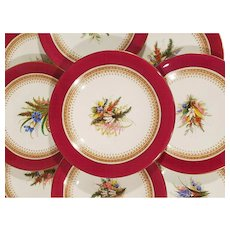 9 Piece Royal Worcester Dessert Set. 6 Plates 3 tazzaz Ruby Red Hand Painted Botanical Floral Plates