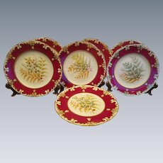 Victorian English Botanical Studies Dessert 6 Plates & 1 Tazza