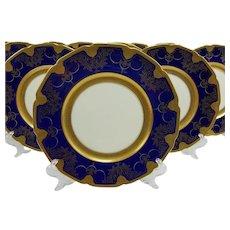 12 Lenox Embossed Cobalt Gold Dinner Plates
