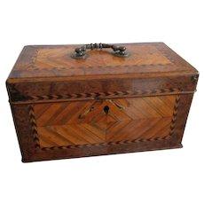 Fine C1830 English Specimen Woods Box