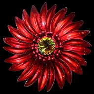 "Vintage~1970's Large Red Enamel ""DAISY"" Flower  w/ Watermelon Heliotrope Rivoli Center Brooch"