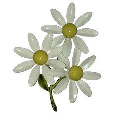 1960's White & Yellow Enamel Daisies Brooch