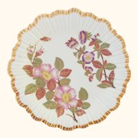 1888 Hand Painted Royal Worcester Botanical Floral Plate - Exquisite Gilding - #4