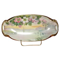 Hand-Painted Nippon Porcelain Relish