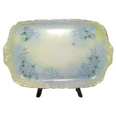 Hand-Painted Limoges Ceramic Vanity Tray