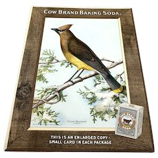 Cow Brand Baking Soda Store Counter Advertising Display - Cedar Waxwing c.1915