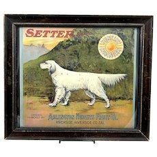 1915 Setter Brand Orange Crate Label - Framed