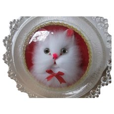 Framed Furry White Cat Face Under Glass Vintage
