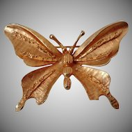 Coro Pegasus Brushed Gold Tone Butterfly Brooch Vintage