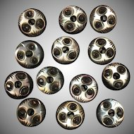 VIntage lot of thirteen matching carved mother of pearl and steel rivet buttons
