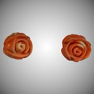 Victorian carved Coral rose earrings with pierced screw backs
