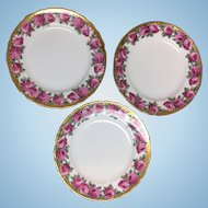 Three Tuscan Rose fine English bone china luncheon plates